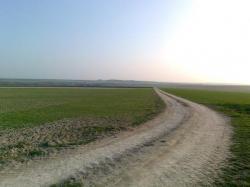 voie venant de Roizy, Nord D 150