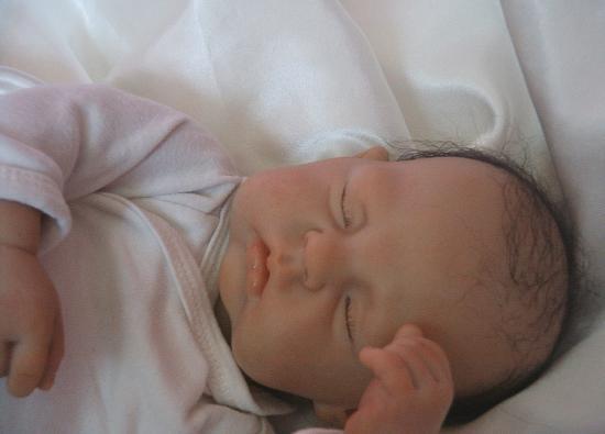 Lilian (à adopter) pas encore sur le site