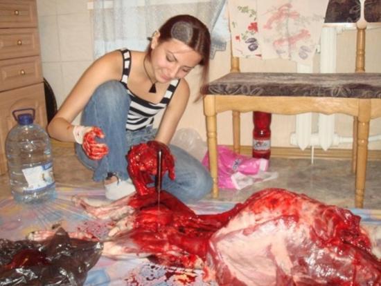 chien mort cruoté monstre insolite mange