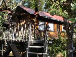 Tarzan Family Tree House