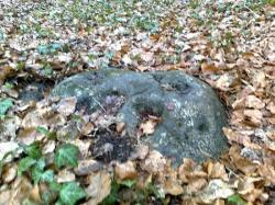 pierre de fond, noire, non du coin