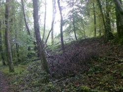 bStArnoult,un km long,tout droit ds bois