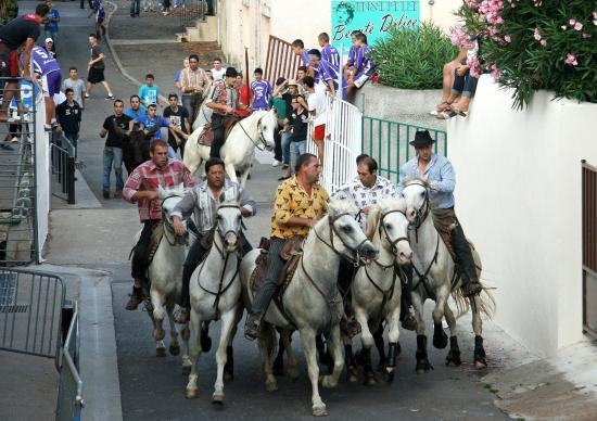 Festival de Bandido