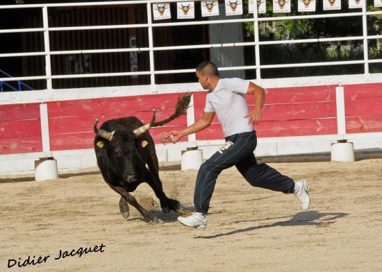 N° 614 sur Cédric Navarro