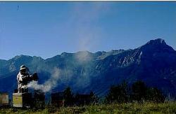 Pierrick et la montagne