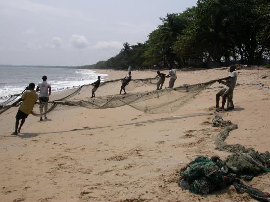 Pêcheurs artisanaux maritimes au nord de Libreville