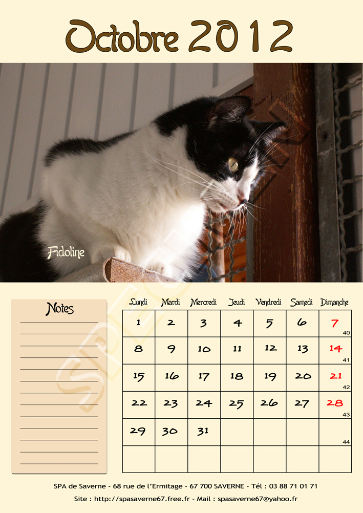 Calendriers spa 2012 for Porte de champerret salon chiens chats