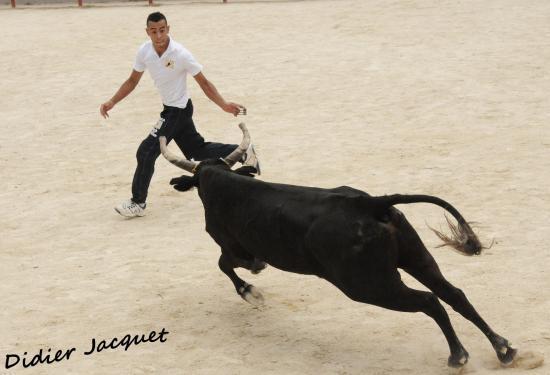 N° 321 sur Jamel Bouharguane