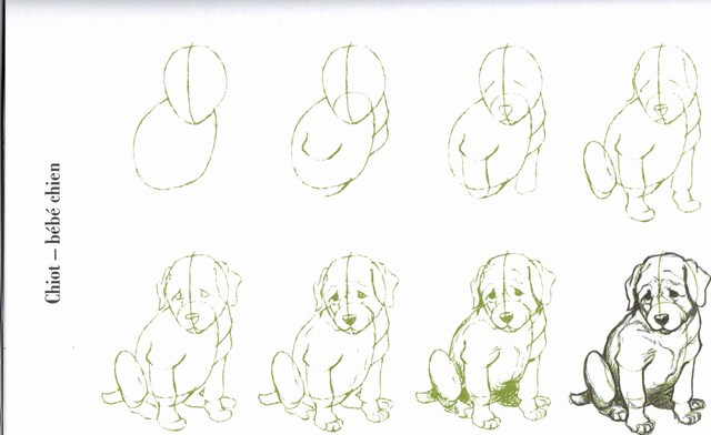 Célèbre apprendre à dessiner TG38
