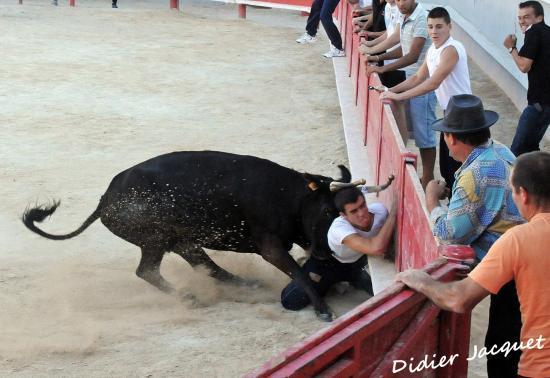 N°332 sur David Guerrero